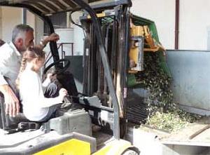 Anteprima di BenvenOlio 2012 - Domenica in Frantoio