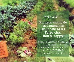 Giornata mondiale dell'Ambiente -  L'orto sinergico: l'orto che non si zappa! 8 giugno 2019    ore 15 - 18