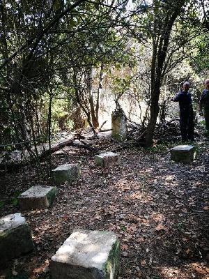 ITALIA SELVATICA: DANIELE ZOVI ALLA FORESTA URBANA DI LECCE